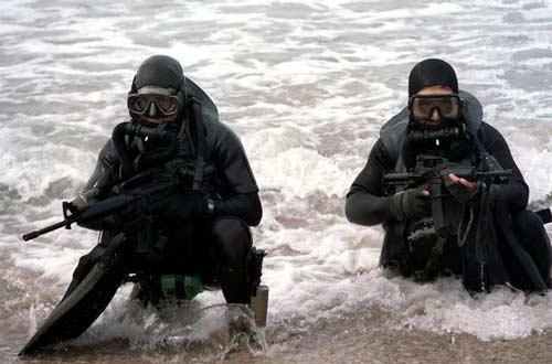 Seals comin' atcha! Photo credit: U.S. Dept of Defense