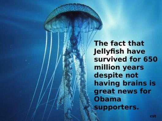 Jellyfish & Obama Supporters